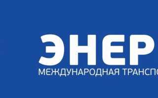 Грузовые перевозки в пределах россии: какую компанию выбрать?